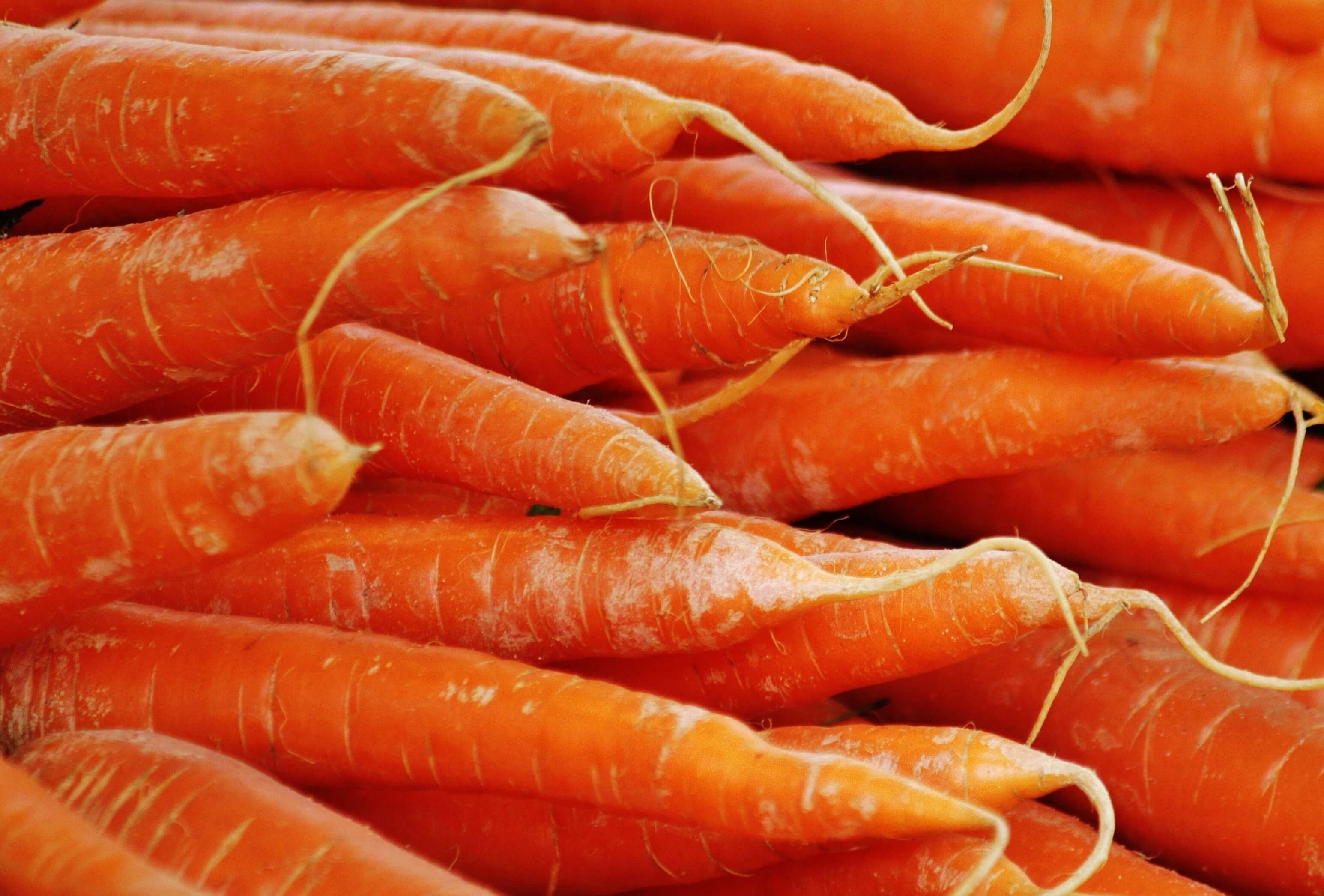 carrots-close-up-crops-54082-2